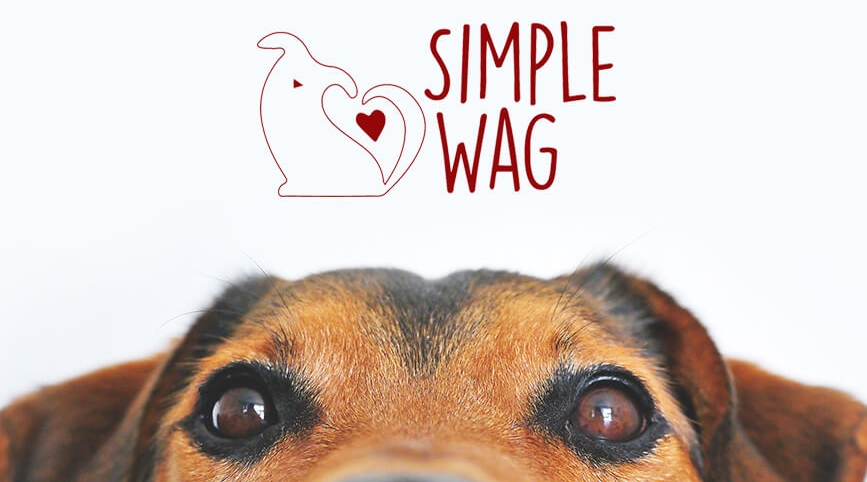 Simple-Wag-Cover